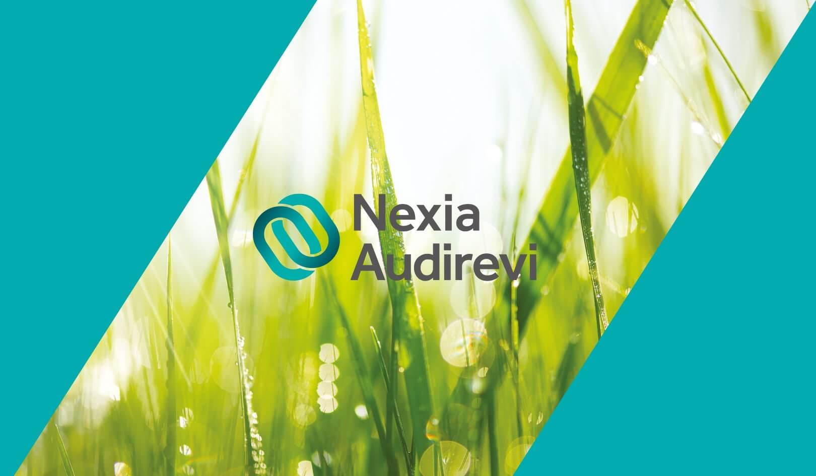 Immagine istituzionale Nexia Audirevi